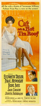 cat-on-a-hot-tin-roof_babed93b